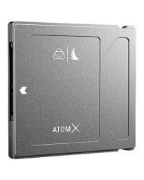 Atom X SSDmini 500 GB by Anglebird